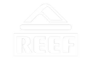 Temeka Group client icon - Reef
